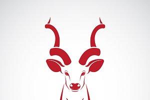 Kudu antelope horns