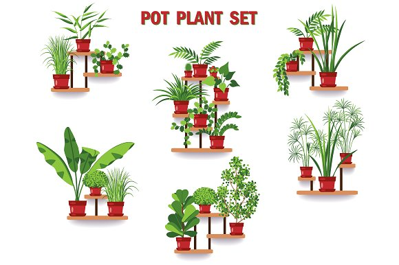 Pot Plant Set in Illustrations