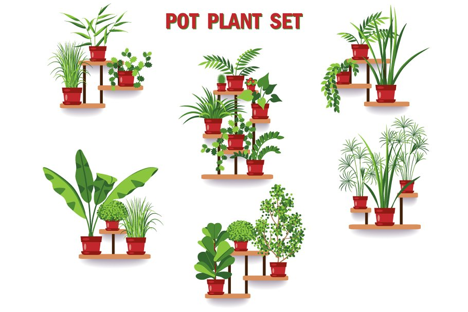 Pot Plant Set in Illustrations - product preview 8