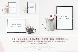 BLACK FRAME SPRING BUNDLE