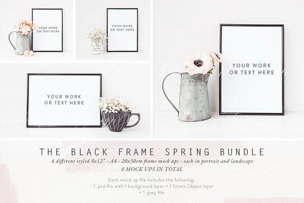 BLACK FRAME SPRING BUNDLE