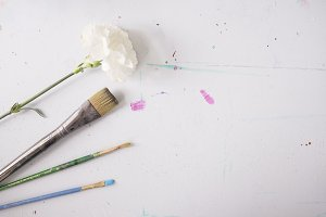 Paint Brushes and Flower - Flat Lay