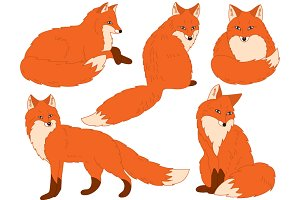 Foxes Set