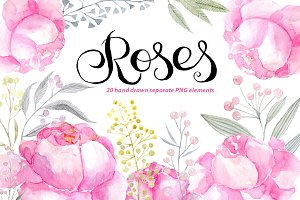Watercolor pink roses png clipart