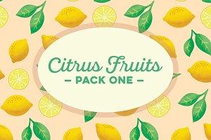 Citrus Fruits Pack 1: Lemons