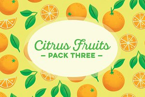 Citrus Fruits Pack 3: Oranges