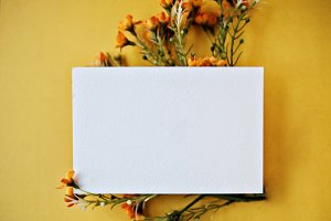 Orange flowers & blank card