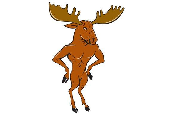 Moose Standing Hands Akimbo Cartoon