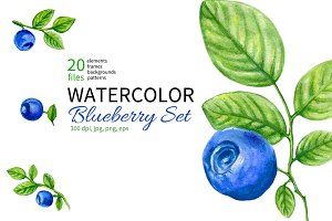 Watercolor Blueberry Collection