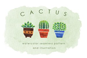 Cactus Pattern and Illustration