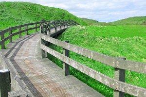 A wooden path along green hill