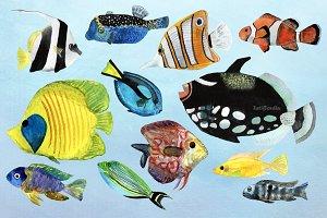 12 Watecolor Tropical Fish Clip Art