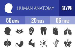 50 Human Anatomy Glyph Icons