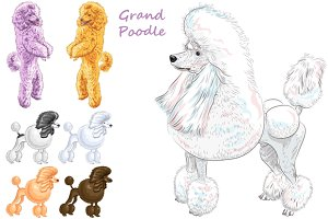 Dog Grand Poodle SET