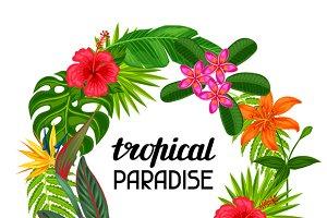 Tropical paradise frames.