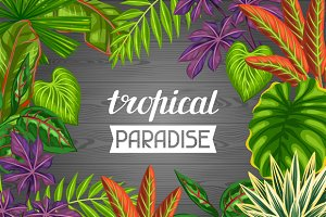 Tropical paradise cards.