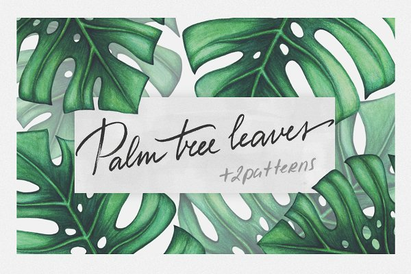 Palm tree leaves + patterns