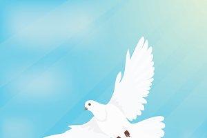 White Dove Soars in Space