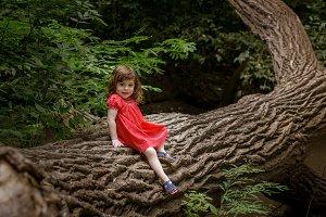 Little Girl Sitting On a Tree Trunk