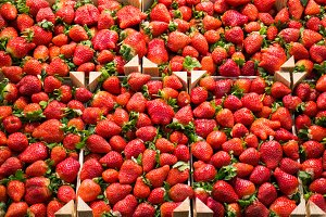 Fresh strawberries stall