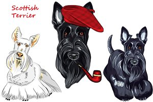 Scottish Terrier dog SET