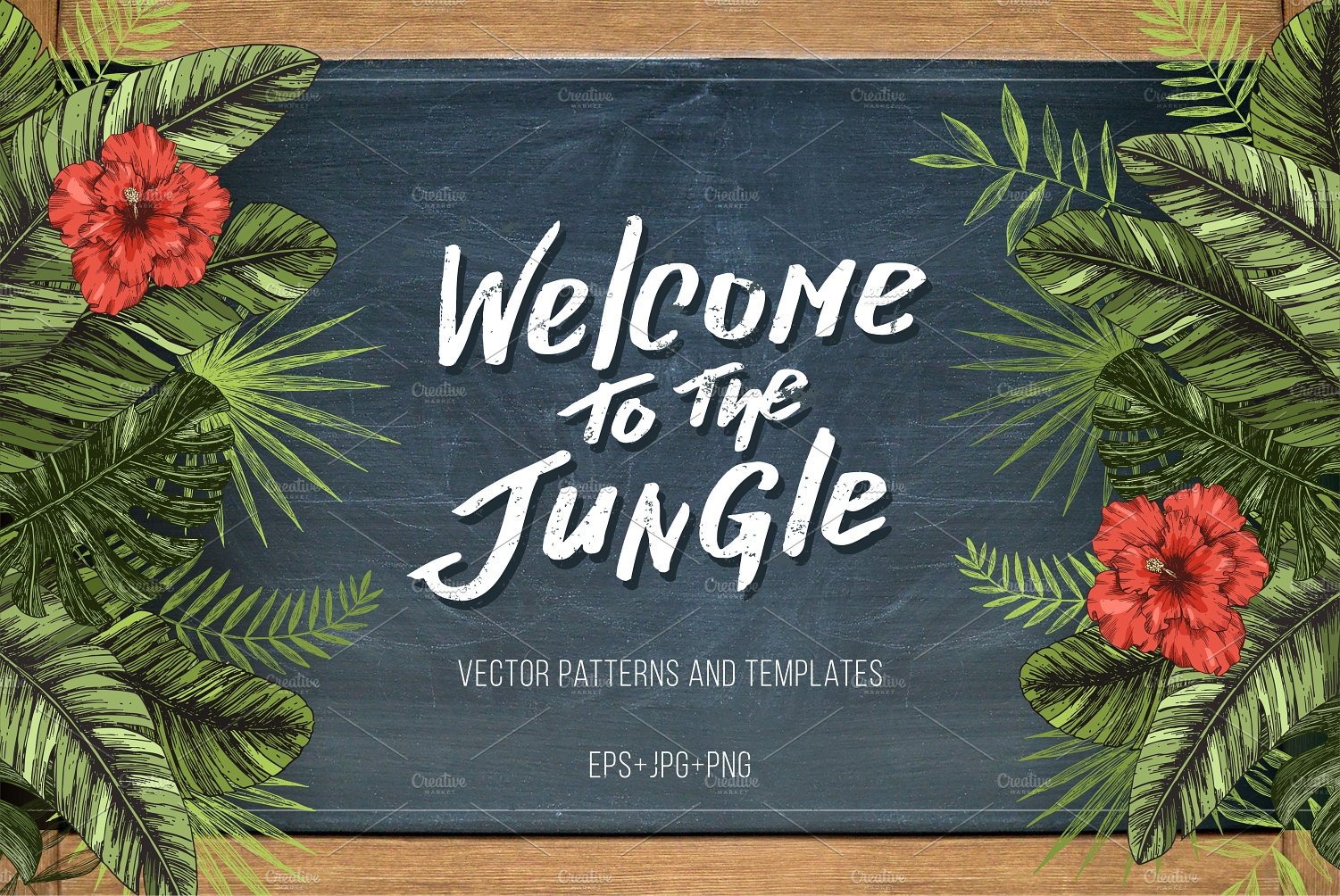 Welcome To The Jungle Illustrations Creative Market