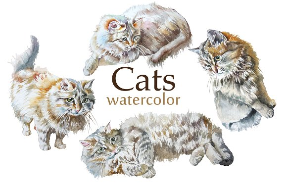 Cats. Watercolor. - Objects
