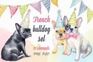 French bulldog set + Bonus