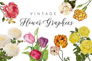 Vintage Flower Illustrations