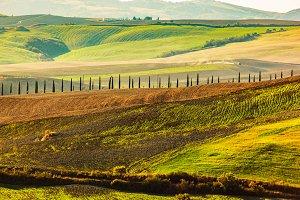 Tuscany autumn landscape.