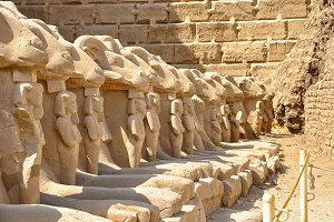 Many Egyptian sculptures in row