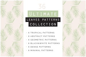 Leaves Seamless Patterns Collection