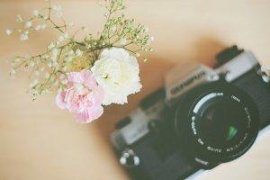 Vintage camera and flower