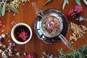 Herbal tea and herbs, flowers