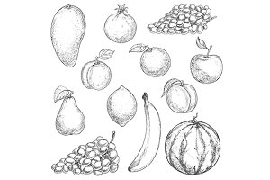 Tropical fruits sketches