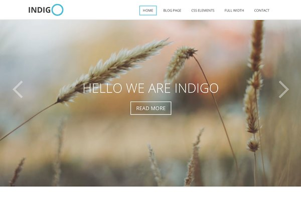 WordPress Non-Profit Themes: Viva Themes - Indigo - Multi-Purpose Theme