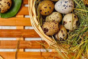 Dietetic quail eggs in basket.