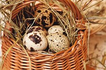Eggs are in basket. Weight loss