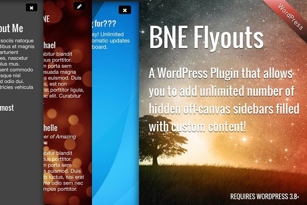 WordPress Plugins: BNE Creative - Flyout Custom Content for WordPress