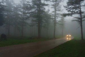Car in foggy road