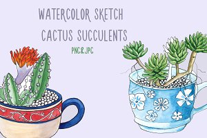 Watercolor sketch of a cactus