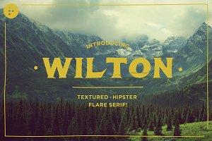 Wilton - 50% off 'Thank You' Price!