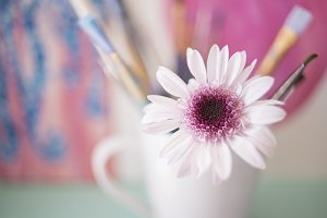 Paint Brushes and Pink Flower 2
