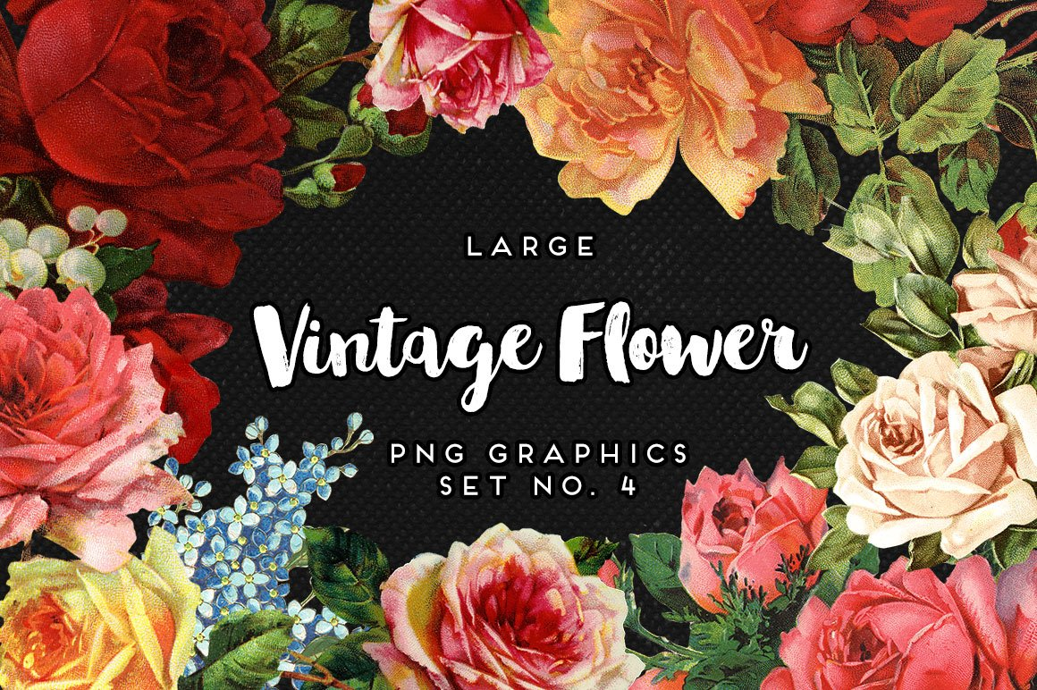 Large Vintage Flower Graphics No 4 Graphic Objects