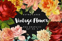 Large Vintage Flower Graphics No. 5