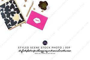 Styled Stock Mockup #009