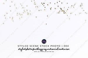 Styled Stock Mockup # 004