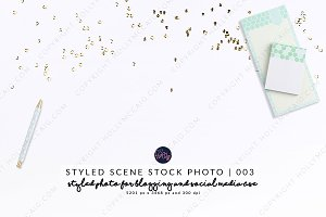 Styled Stock Mockup #003