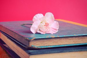 Old books and flower