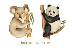 Watercolor panda and koala.